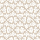 White lace seamless pattern Royalty Free Stock Photos