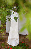 White lace wedding dress hanging on branch of green tree Stock Images