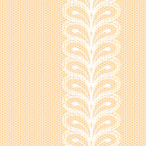 White lacy border Royalty Free Stock Photos