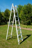 White ladder Stock Photography