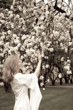 White lady and white flowers royalty free stock image