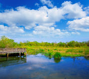 White Lake at Cullinan Park in sugarland Texas Stock Images