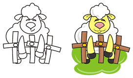 White lamb coloring royalty free illustration