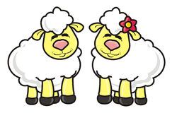 White lamb couple Royalty Free Stock Image