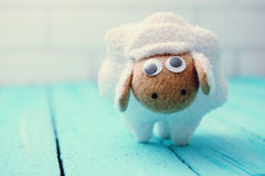 White lamb Stock Photography