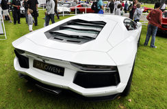 A white Lamborghini Aventador LP700-4 Stock Photography