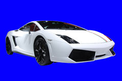 White lamborghini coupe. On the blue background Royalty Free Stock Image