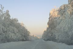 Winter icy road in the snow-covered forest. White landscape: winter icy road through the snow-covered forest Royalty Free Stock Image