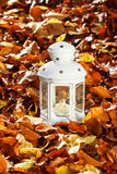 White lantern on autumn leaves Stock Photo