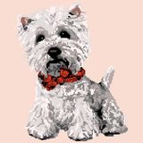 White lap dog, Bichon Havana painted by squares, pixels. Vector illustration stock illustration