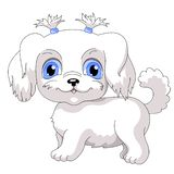 10 White lap dog. Little dog with blue eyes vector illustration vector illustration