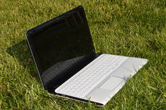 White laptop on the grass Stock Images
