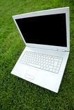 White Laptop on green grass Stock Photography