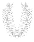 White laurel wreath Stock Photos