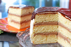 White layer cake with ganache. White layer cake with chocolate filling and chocolate ganache plus sprinkles with white icing royalty free stock image