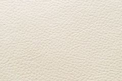 White leather. Stock Photo