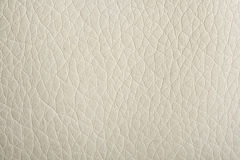 White leather Stock Photography