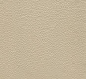 White leather texture Stock Image