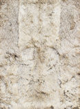 White leathers of rabbits, four Stock Photo