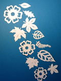 White leaves and flowers . Paper cutting. Stock Images