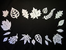 White leaves frame. Paper cutting. Stock Photos
