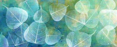 White leaves silhouettes Stock Photos
