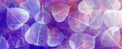White leaves silhouettes Royalty Free Stock Photos