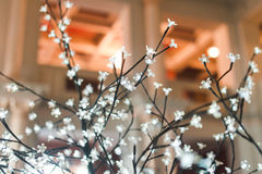 White LED branches Royalty Free Stock Photos