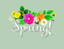 White lettering spring like ribbon. Background decorated by dandelions, chamomiles Royalty Free Stock Image