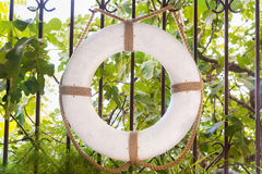 White lifebuoy hanging on the bars in the garden. Hot Sunny day Royalty Free Stock Image