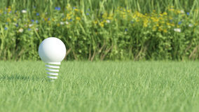 White light bulb on grass field Stock Images