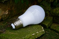 White light bulb rests on old stones near the wall. A white light bulb lies on a green moss on old stones Stock Image