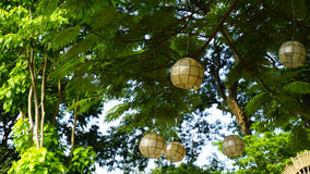 White light circular ornament decoration in trees, greens and plants with space for copy Stock Images