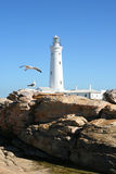 White light house Royalty Free Stock Photography