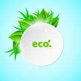 White, light round banner in the summer style. Fresh leaves and grass. Drops of dew flow down the leaves. Ecological banner. Reali. Stic  illustration. EPS 10 Stock Image