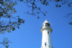 White lighthouse with tree canopy and blue sky Royalty Free Stock Photos
