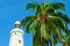 White lighthouse and tropical palms. Royalty Free Stock Photos