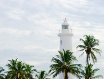White lighthouse under tropical palms Royalty Free Stock Images