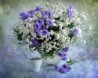 White-lilac bouquet Stock Images
