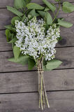White lilac. On dark wood table Royalty Free Stock Photo