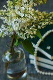 White Lilac flowers Royalty Free Stock Photography