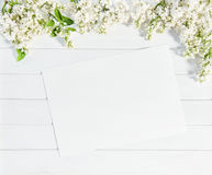 White lilac flowers sketch paper sheet Floral flat lay Royalty Free Stock Images