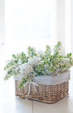 White lilac flowers in a wicker basket Royalty Free Stock Photos