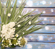 White lilac, grass and daisies on a wooden background Royalty Free Stock Image