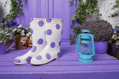 White in lilac peas boots and light lilac interior Stock Photos