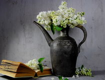 White lilac in a  pitcher Royalty Free Stock Photo