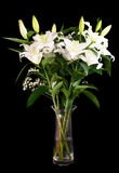 White lilies. Bouquet of white lilies in a glass vase on a black background Stock Photos