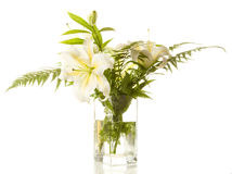White lilies ' bunch on  white Royalty Free Stock Photo