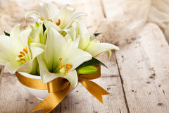 White lilies. Royalty Free Stock Photography