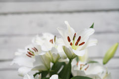 White lilies on light wooden background. Outdoor Royalty Free Stock Photo
